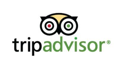 tripadvisor-logo-vector-download.jpg